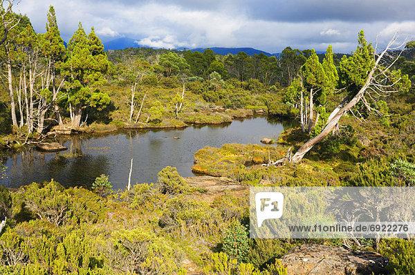 Overview of Lake  Walls of jerusalem National Park  Tasmania  Australia