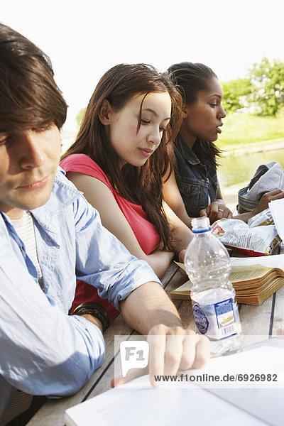 Außenaufnahme  arbeiten  Student  freie Natur