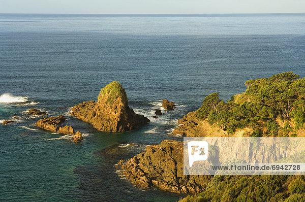 Küste  neuseeländische Nordinsel  Neuseeland