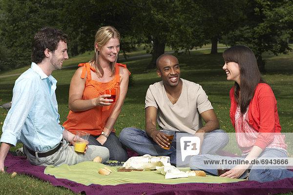 Fröhlichkeit  Freundschaft  Picknick