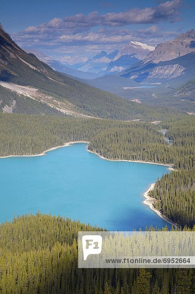 Peyto Lake  Banff-Nationalpark  Alberta  Kanada Peyto Lake, Banff-Nationalpark, Alberta, Kanada