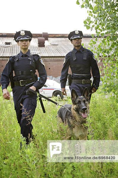 suchen Hund Feld Polizei