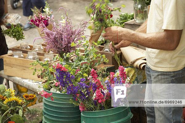Blume  verkaufen  Pflanze  Landwirtin  Markt  Straßenverkäufer