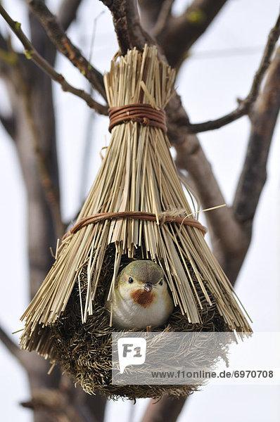Dekoration  Vogel Dekoration ,Vogel