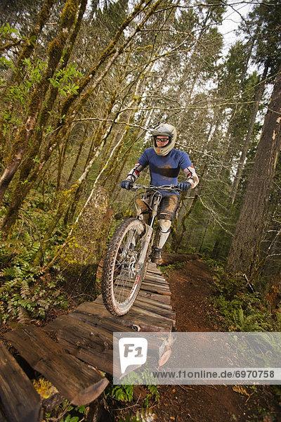 Vereinigte Staaten von Amerika  USA  Mountainbikefahrer  Oregon