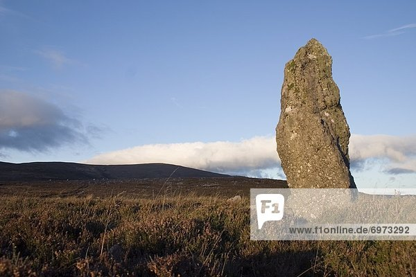 Standing Stone  Farbreaga  Co Waterford  Ireland