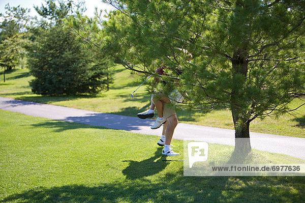 hinter  umarmen  Baum  Golfsport  Golf  Kurs