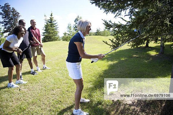 Frau  sehen  Baum  Versuch  Golfspieler  einfangen  Ball Spielzeug  Golfsport  Golf