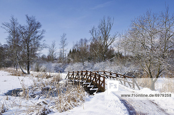 Path and Bridge in Schwenninger Moos  Baden-Wurttemberg  Germany