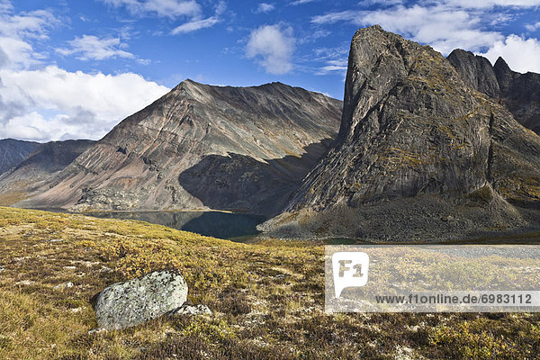 Kanada  Tombstone Territorial Park  Yukon