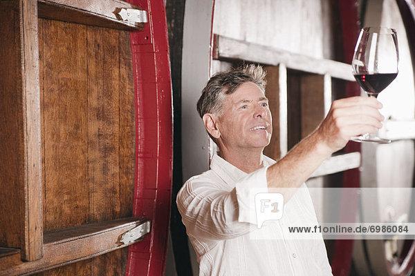 Weingut Mann Glas Wein Untersuchung Weingut,Mann,Glas,Wein,Untersuchung