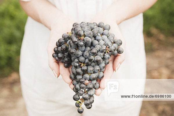Close-up of Woman Holding Grapes