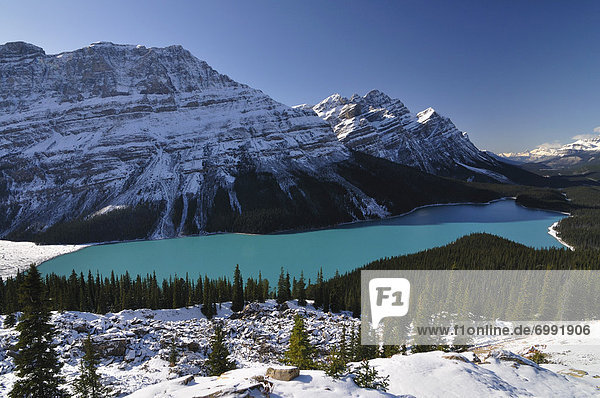 Peyto Lake  Banff-Nationalpark  Alberta  Kanada