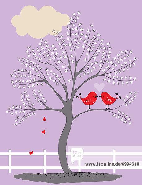 Baum  küssen  Illustration  Vogel