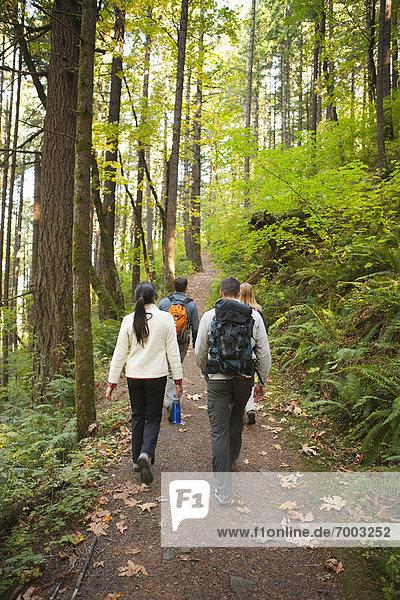 Vereinigte Staaten von Amerika  USA  Hood River  Oregon