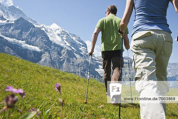 benutzen  gehen  wandern  Rückansicht  Berner Oberland  Schweiz