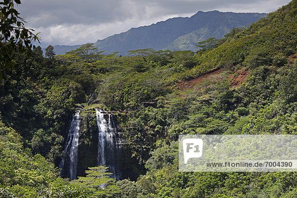 Opaekaa Falls,  Kauai,  Hawaii,  USA