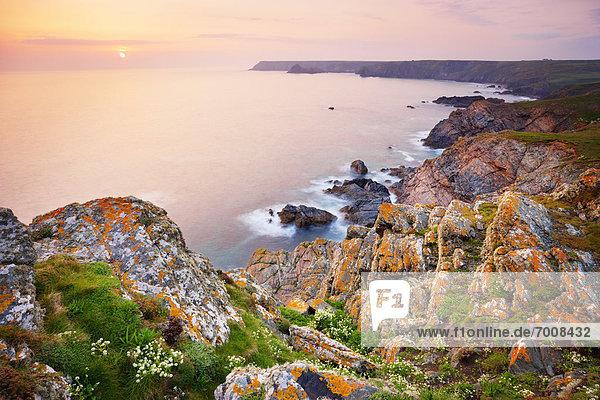Felsen  Steilküste  Küste  zeigen  Cornwall  England  Echse