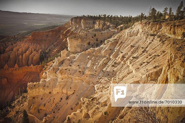 Vereinigte Staaten von Amerika  USA  Bryce Canyon Nationalpark  Utah