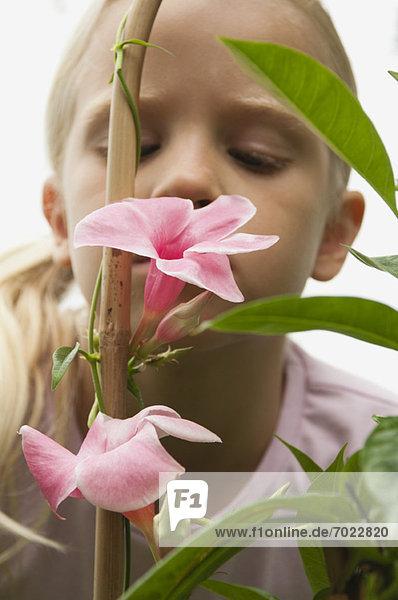 Girl smelling mandevilla flowers