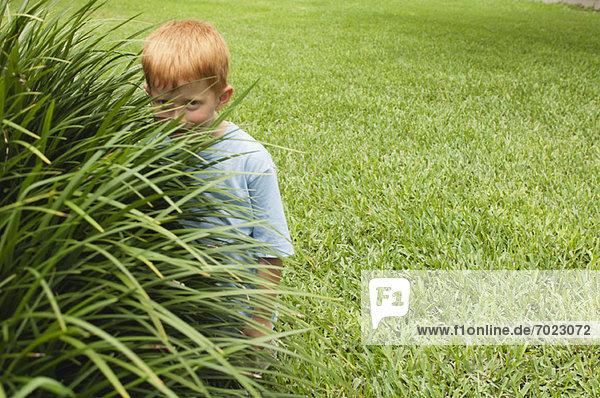 Boy hiding behind tall grass