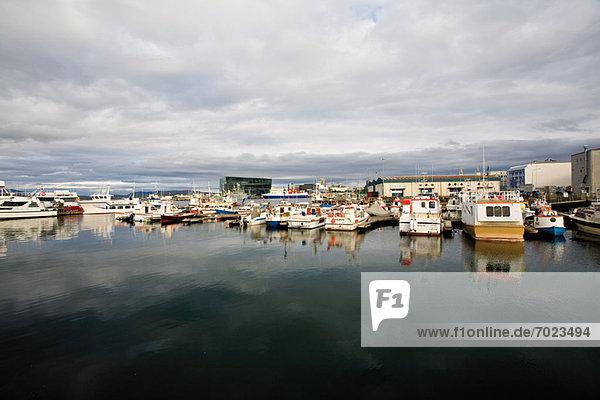 Hafen  Reykjavik  Island