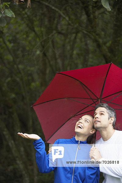 sehen  Regenschirm  Schirm  unterhalb  Regen