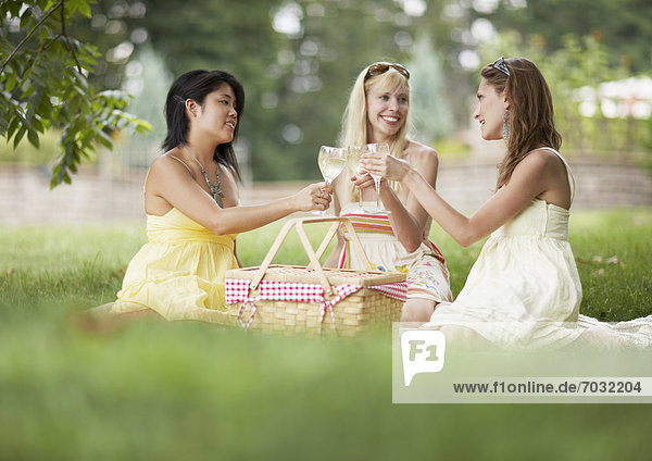 Three Female Friends Toasting at Picnic