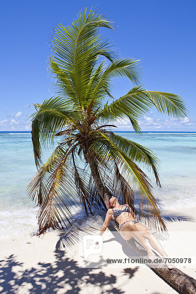 Junge Frau liegt auf einer Kokospalme am Strand  Anse La Passe  Insel Silhouette  Seychellen  Afrika  Indischer Ozean