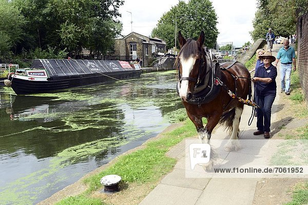 Mandatory Credit: Photo by Stephen Simpson / Rex Features (1839500a) Ilkeston  a restored narrowboat  is towed by a horse  Buddy  a 13-year-old Clydesdale  across London's canal network on its way to the London Canal Museum. It has journeyed from Ellesmere Port in Cheshire  through more than 100 locks  to London to celebrate its 100th birthday Restored narrowboat Ilkeston is pulled across London by Buddy  Britain - 23 Aug 2012