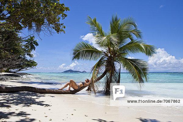 Frau liegt auf einer Kokospalme  Anse La Passe  Insel Silhouette  Seychellen  Afrika  Indischer Ozean