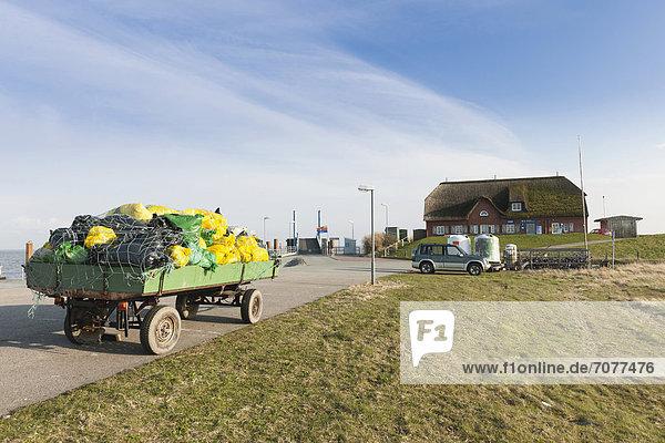 M¸llsäcke zum Abtransport auf das Festland  Hallig Langeness  Nordfriesland  Schleswig-Holstein  Norddeutschland  Deutschland  Europa