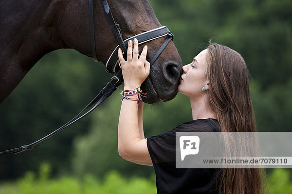 Young woman cuddling with a Hanoverian horse  bay  North Tyrol  Austria  Europe