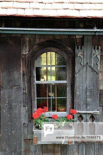 Storchschnäbel Bayerischer Wald Bayrischer Wald Bayerwald Bauernhaus Europa Fenster Blume Museum schmücken Bayern Deutschland