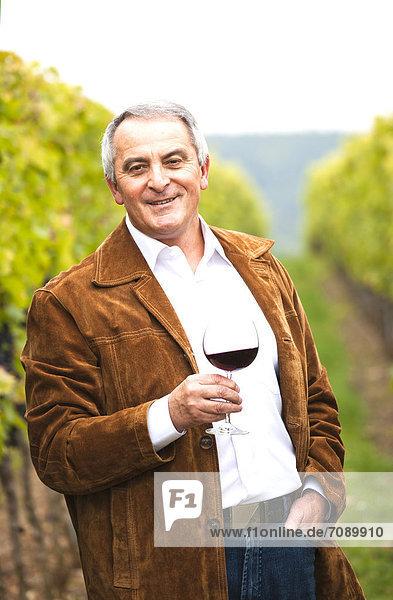 Wingrower in wineyard Wingrower in wineyard