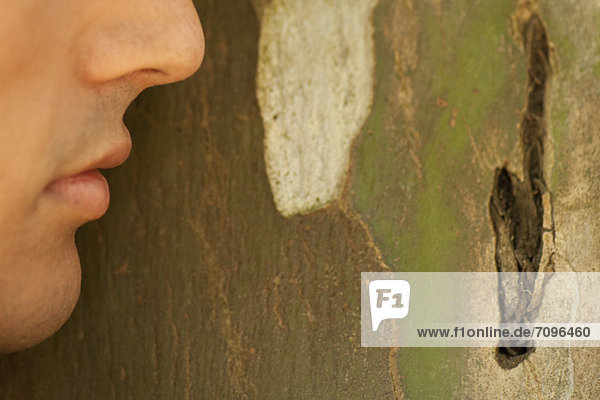 Man's face leaning against tree bark
