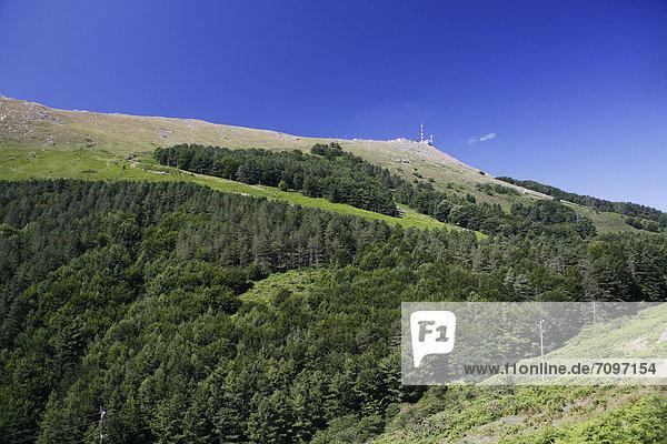 Blick zum Gipfel des La Rhune  905m  Pyrenäen  Region Aquitanien  DÈpartement PyrÈnÈes-Atlantiques  Frankreich  Europa