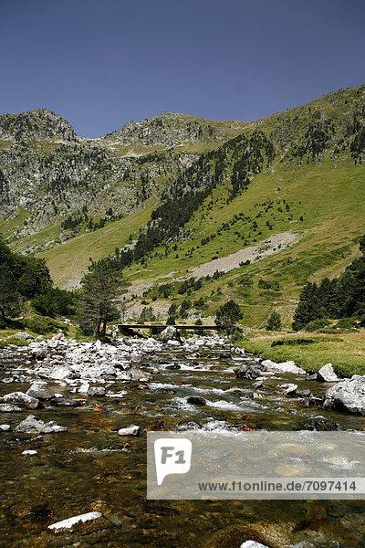 Wildbach  Landschaft in den Pyrenäen  französische Pyrenäen  Nationalpark bei ArgelËs-Gazost  Region Midi-PyrÈnÈes  DÈpartement Hautes-PyrÈnÈes  Frankreich  Europa