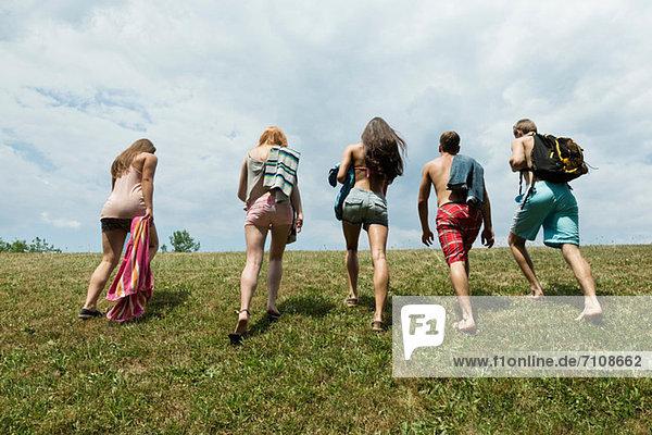 Five friends walking in field  rear view