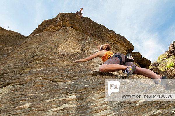 Kletterer beim Klettern  Ruapuke  Raglan  Neuseeland