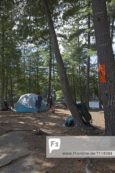 John West  65  and his son Joey  13  set up their campsite during a canoe trip  Algonquin Provincial Park  Ontario  Canada