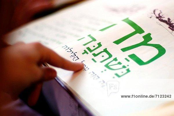 Abendessen  Frau  lesen  Tradition  Urlaub  Text  Judentum