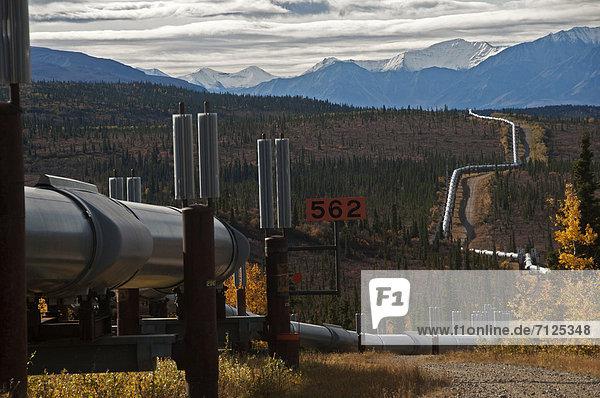 Vereinigte Staaten von Amerika  USA  Energie  energiegeladen  Amerika  Stadtplanung  Alaska  Öl  Pipeline