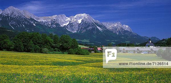 Landschaftlich schön landschaftlich reizvoll Europa Wohnhaus Sommer Baum gelb Gebäude sauber Natur Kirche blau Wiese Löwenzahn Österreich Frische Stimmung Platz Sommerurlaub Tirol