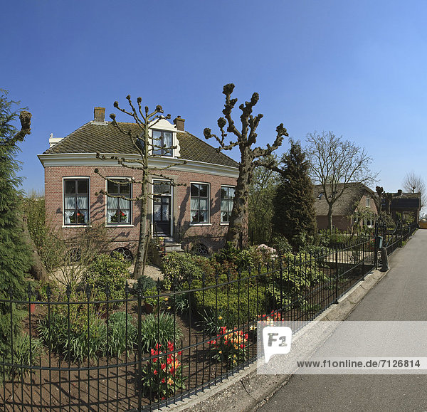 Europa Blume Wohnhaus Großstadt Dorf Garten Niederlande