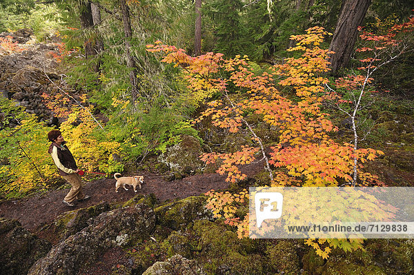 Vereinigte Staaten von Amerika USA Farbaufnahme Farbe Frau Amerika gehen Hund Nordamerika Cascade Mountain Moos National Forest Nationalforst Oregon