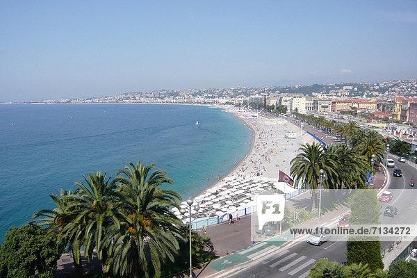 France  Europe  Nice  Nice  Côte d'Azur  beach  seashore  promenade of the Anglais  palms