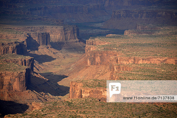 Luftaufnahme  Felsformation Moses and Zeus  Taylor Canyon  Island in the Sky District  Canyonlands-Nationalpark  Utah  Vereinigte Staaten von Amerika  USA