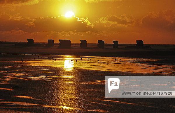 Sonnenuntergang  Amrum  Nordsee  Schleswig-Holstein  Deutschland  Europa
