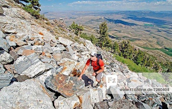 Felsbrocken  Berg  Schornstein  wandern  Klettern  Richtung  Humboldt